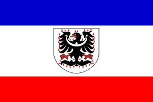 Svatováclavská-zástava