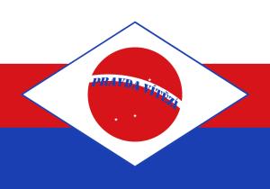 brasilocheco
